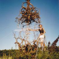 Installations et Expositions - L'amphore de Bacchus - Saint Restitut 2002