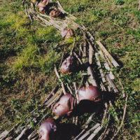 Installations et Expositions - La rivière de bois à Die