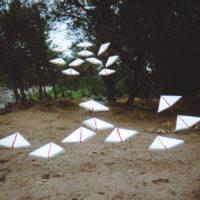 Installations et Expositions - Les Oiseaux Migrateurs - St Martin d'Ardèche 2001